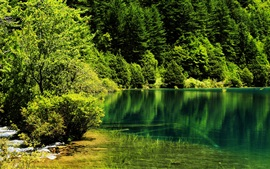 Preview wallpaper China, Jiuzhaigou National Park, trees, lake, green