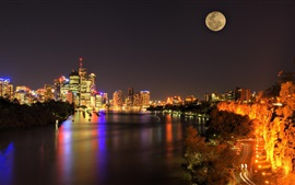 City night, moon, skyscrapers, lights, lake, boats