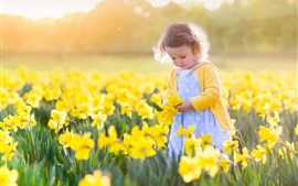 Preview wallpaper Cute little girl, yellow daffodils fields