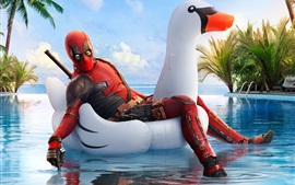 Preview wallpaper Deadpool 2, white swan, swim pool