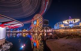 Disneyland, grande roue, parc, nuit, lumières