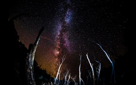 Preview wallpaper Driftwood, space, stars, night