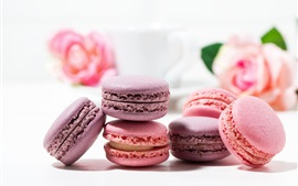 Food, macaroon, roses, cake, white background