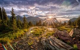 Parque Nacional Glacier, montañas, árboles, piedras, rayos de sol, otoño, Estados Unidos