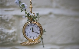 Preview wallpaper Gold pocket watch