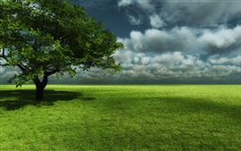 Green meadow, tree, sky, clouds