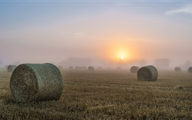 Preview wallpaper Hay, fields, morning, fog, sunrise