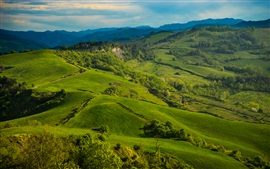 Preview wallpaper Italy, Tuscany, meadows, hills, field, green grass, trees