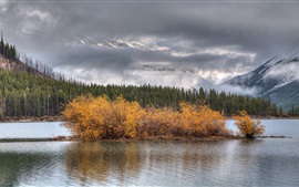 Lake, trees, clouds, autumn