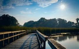 Lago, puente de madera, hierba, árboles, sol