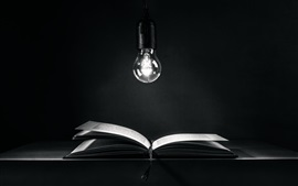 Bombilla, libro, oscuridad