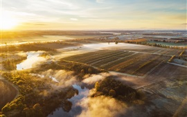 Preview wallpaper Lithuania, morning, fog, fields, trees, sunrise