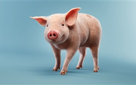 Preview wallpaper Little pig, blue background