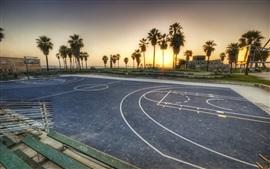 Aperçu fond d'écran Los Angeles, terrain de basket, arbre, coucher de soleil