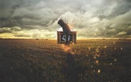 Homem, foto, grama, desintegrar, design criativo