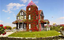 Miracle Garden, flowers covered the house, lawn, Dubai, UAE