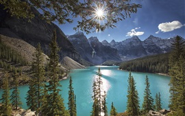 Moraine Lake, árboles, montañas, rayos de sol, Canadá