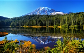 Preview wallpaper Mount Rainier National Park, lake, trees, mountains, water reflection, USA