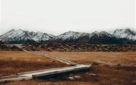 Montañas, hierba, camino, otoño