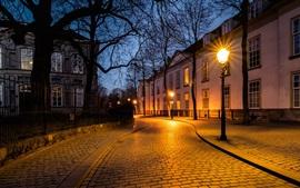 Holanda, Breda, rua, luzes, árvores, casas, noite
