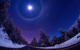 Night, moon, sky, road, trees, snow, winter