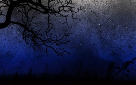 Preview wallpaper Night, trees, twigs, darkness