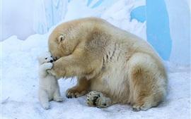 Белая медвежья мать и детеныш