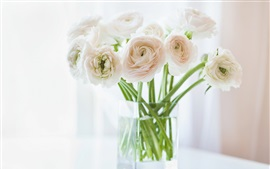 Preview wallpaper Ranunculus flowers, vase, bokeh