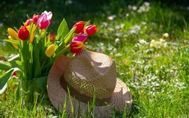 Preview wallpaper Red and yellow tulips, hat, grass