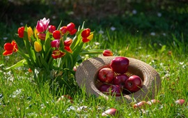 Preview wallpaper Red tulips and red apples, hat, grass