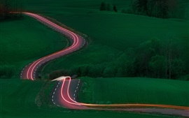 Road, light lines, fields, trees, green, night