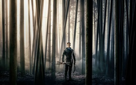 Preview wallpaper Robin Hood: Origins, 2018 movie