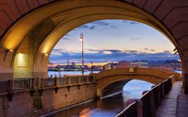 Saint Petersburg, Hermitage, Neva, river, dusk, lights