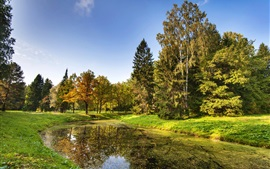 Preview wallpaper Saint Petersburg, park, trees, grass, river, autumn, Russia