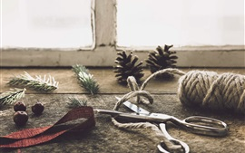 Scissors and rope