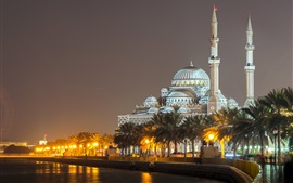 Шарджа, ОАЭ, Мечеть Аль-Нора, дворец, ночь, огни