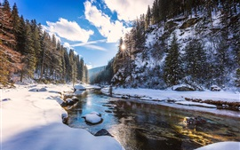 Preview wallpaper Snow, river, trees, sun rays, winter