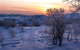 Preview wallpaper Snow, trees, path, clouds, sunset, winter