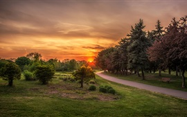 St. Catharines, Ontario, Canada, park, trees, road, grass, sunset
