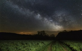 Preview wallpaper Starry, grass, night, path