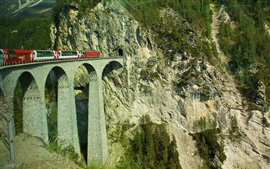 Preview wallpaper Switzerland, train, overpass, tunnel, mountains
