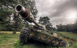Tanque, ejército, árboles