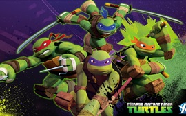 Teenage Mutant Ninja Turtles, series de televisión, anime