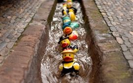 Patos de brinquedo nadam na água