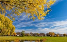 Деревья, дома, поля, небо, облака