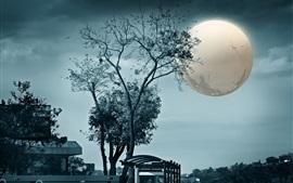 미리보기 배경 화면 나무, 달, 밤, 독창적 인 디자인