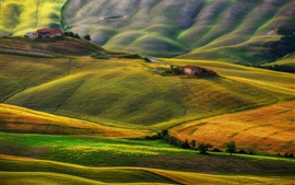 Preview wallpaper Tuscany, Italy, field, barns, hills