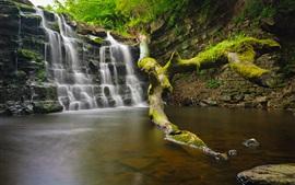 Cachoeira, água, árvore, rochas