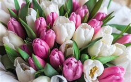 Preview wallpaper White and pink tulips, flowers, bouquet