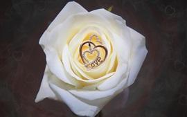 Rosa branca, pingente de coração de amor, decoração